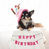 『4歳のお誕生日おめでとう!!!』の画像