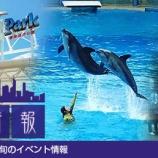 『香港彩り情報「香港の夏を楽しもう!旬のイベント情報」』の画像