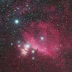 『オリオン座の馬頭星雲を中心とする分子雲』の画像