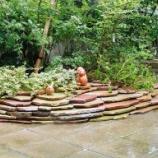 『お庭の住人2』の画像
