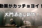 大門酒造。新しいお酒『DAIMON35純米大吟醸』が登場してる!~そしてホームページがカッチョヨイ!~