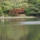 『神戸、再度山にも』の画像