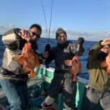 『GACHI五目ジギング釣行‥チカメキントキ編』の画像