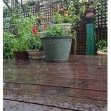 『7月の雨』の画像