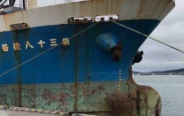 『お久しぶりです!館山港に釣りに行ってきました!』の画像