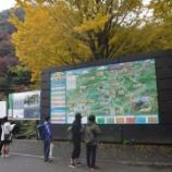 『高尾山トレッキング』の画像