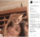 """石田ゆり子、""""猫を被った""""驚きの動画を公開「誰がなんと言おうと被っています」"""