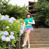 『あじさい寺、本土寺の紫陽花を背景に』の画像