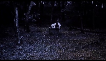 【急募】うっかり貞子の呪いのビデオを再生してしまった時の対処法