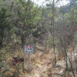 『【山の危険】万が一山で遭難した場合に役立つ必需品』の画像
