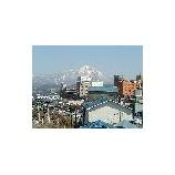 『ビン詰工場の屋上から・・・』の画像