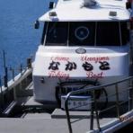 中本渡船 釣果情報