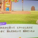 『おおお!!!乃木坂46メンバーの『どうぶつの森』ついに見つかる!!!!!!』の画像