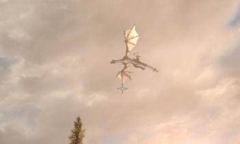 珍現象:ドラゴンライダー