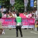 2015年横浜開港記念みなと祭国際仮装行列第63回ザよこはまパレード その59(エレガントステージ)