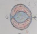 地球空洞説について