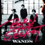 『CD Review:WANDS「BURN THE SECRET」』の画像