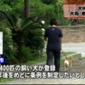 【飲食】東大阪市のドーナツ店・犬を連れて訪れた男性、4度も店主に絡む!(画像)