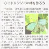 『(産経新聞)ミドリシジミの林を作ろう(戸田市)』の画像