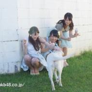 【特報】川栄李奈ちゃんのラブ犬CMが超絶かわいい そして松井玲奈の太ももが超絶エロい!! アイドルファンマスター
