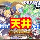 【ドラガリ】第14回ドラガリアフェスを引いていく!