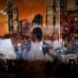 『ハーモニー&ダイバーシティ』の画像