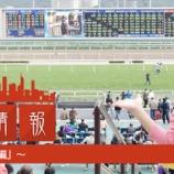 『香港彩り情報「香港競馬特集~基本編~」』の画像