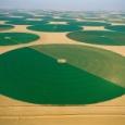 【画像】Googleマップでサウジアラビア見てたら変な場所見つけた! #サウジアラビア #センターピボット式農場
