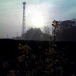 『肌さむい朝』の画像