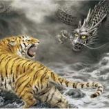 『竜と虎ってなんか互角みたいに書かれてるけどさ』の画像