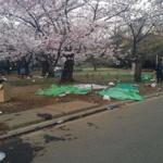 中国人「これが高いと言われていた日本人の民度なのだろうか」…花見の後に散乱したゴミに衝撃受ける