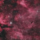 『はくちょう座のγ星(サドル)付近の散光星雲&暗黒星雲』の画像