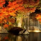 『秋の夜長は注意!』の画像
