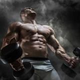 半年で筋肉量6kg増やしたけど質問ある?