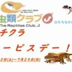 爬虫類倶楽部 J ジョイフル本田 ひたちなか店