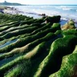 『台湾北海岸と有名夜市の旅【1】淡水駅 と 緑の岩』の画像