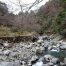 箱根の旅 ~チェンバレンの散歩道 その②~