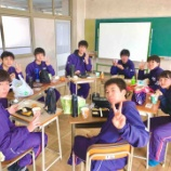 『Team Lunch』の画像