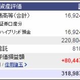 『週末(5月20日)の保有資産。3億1898万7439円』の画像