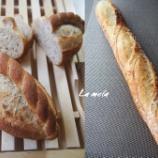『ホシノ天然酵母 グラハムブレッド、にんじんパン他』の画像
