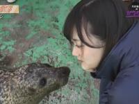 【悲報】乃木坂46メンバーのキス画像が流出wwwwwwwwwwwwww