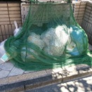 【悲報】わい、近所のババアにゴミ出しの注意をした結果wwwwwwww