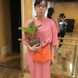 『植物とかわいい多肉 村上』の画像