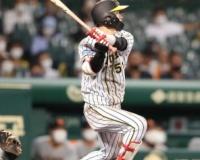 阪神・中野 9度目の猛打賞で貢献 佐藤輝抹消に決意「自分がやったろうという気持ちが更に強く」