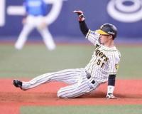 金本知憲氏 阪神にとって大きな「遊撃・中野」の固定 一番の魅力は走力 近本とともにチームの強みに