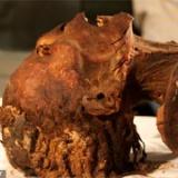3000年前の「叫ぶ女のミイラ」の死因が判明! CTスキャンにより死の直前の様子が明らかに
