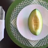 『【リニューアル】ナイフとフォークでいただくメロン!!新しくなったフルーツShomeido(正明堂)で静岡県産完熟マスクメロンを食べてきた!―東区植松町』の画像