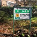 『戸田市五差路そばにある「かじや緑地」の花苗の植え替え。町会と学童の子どもたちの力でまちがまた綺麗になりました。どうぞお通りの際は目に留めてくださいまし。』の画像