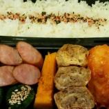 『8月上旬のお弁当』の画像