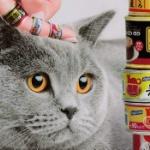 「缶詰リングコレクション」第5弾!待望の「猫缶ミックス編」がガチャに登場!